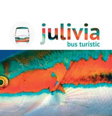 Julivia bus turístic